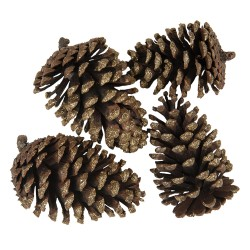 Decoration pine cones ( set...