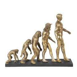 Decoration human evolution...