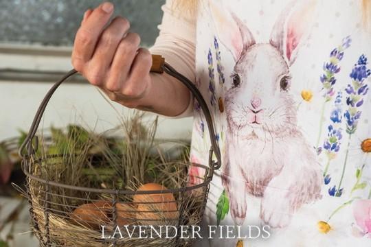 LF Lavender Field